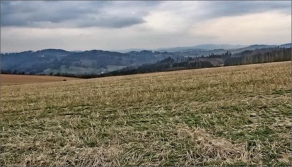Krajina u Tasovic. Na horizontu Horní les