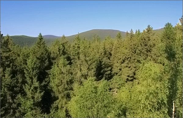 Pohled z Rolandova kamene k západu. V popředí Hradečná