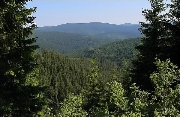 Nad údolím Videlského potoka. Pohled k Černému vrchu a Jelením loučkám
