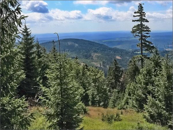 Pohled z Jeřábu k jihovýchodu. Jak se kopec jmenuje, nevím...
