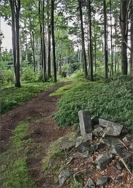 Starý hraniční chodník na Smrku