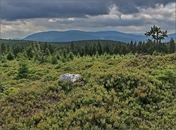 Pohled od Brousku ke Keprnické hornatině