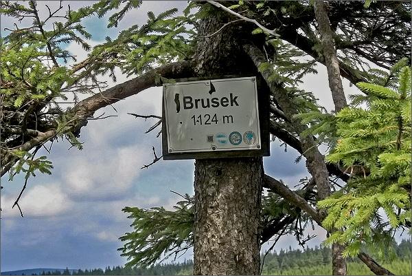 Brousek