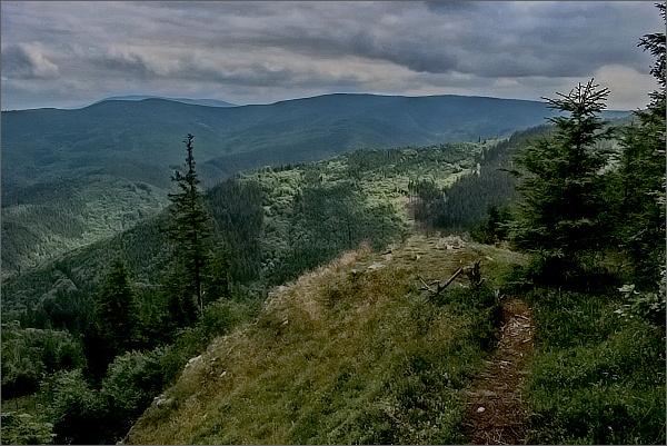 Břidličný, pohled na Rychlebské hory. Vpravo Smrk, vlevo Lví hora a Studený. Za nimi Šerák a Keprník