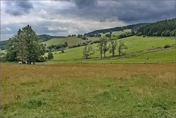 Pastviny u Zálesí