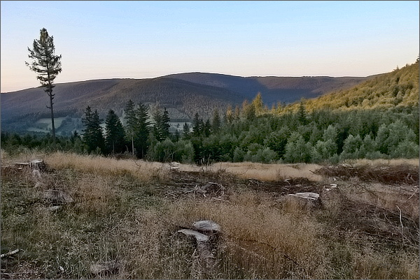 Czernica z Hraničného vrchu